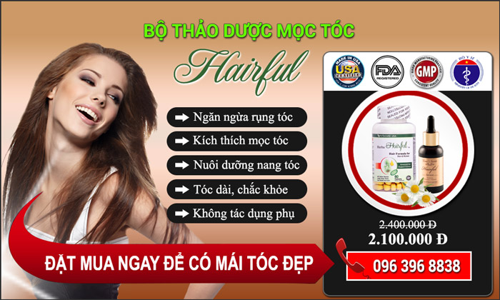 banner-moc-toc-hairful-2